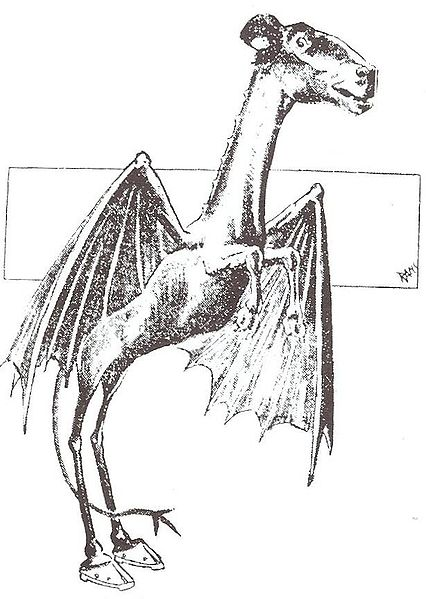 Image of Leeds Devil from Philadelphia Post newspaper 1909