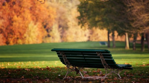 bench-in-the-park-234633